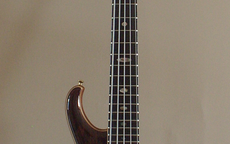 Alembic Marc King