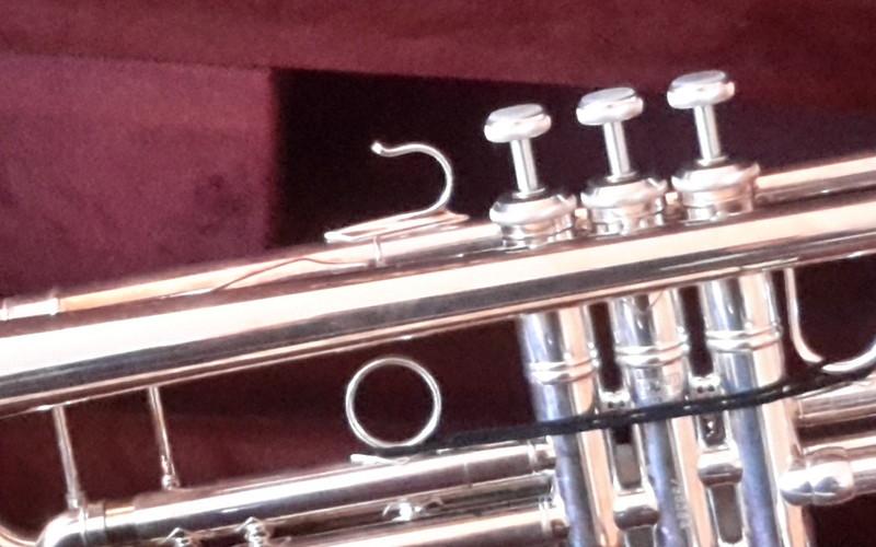 Bach Strativarius